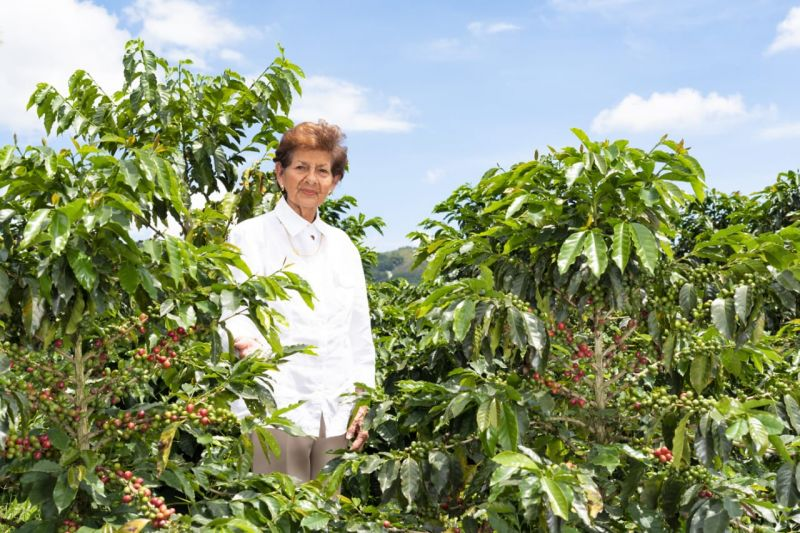 Koffieboerin Lucia Pelaez uit Colombia